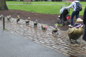 Visiter Boston - Canards - Make way for ducklings